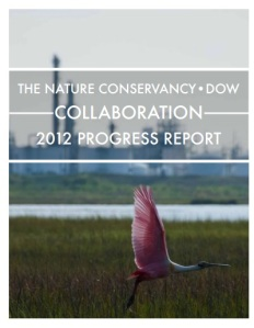 Dow TNC 2012 annual report