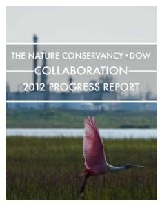 Dow TNC 2012 annual report